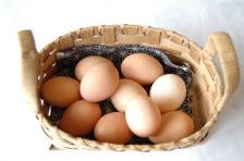 奥美濃古地鶏の卵